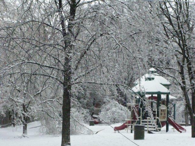 icypark