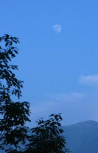 The moon at twilight