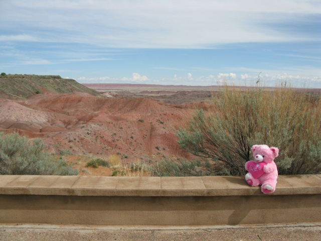 I think Brian loved the painted desert most of all