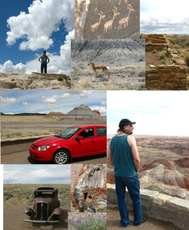 We loved the Painted Desert.  Brian especially liked the ruins of the living quarters for the Puerco Pueblo, and the pictographs they left on the rocks.  He saw his first antelope, and about a thousand petrified logs.