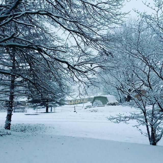 snow-dec-2016